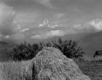 16_RDeLuise_Fishtail-and-Haystack.jpg