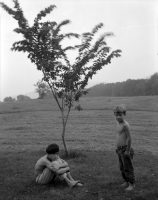 two-boys-and-tree.jpg